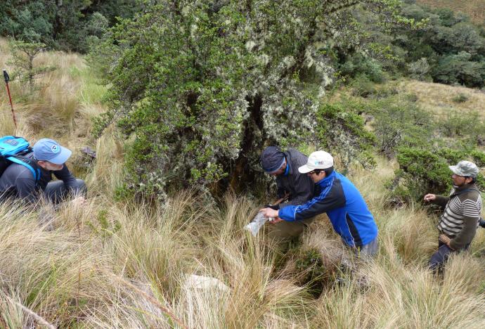 Aportes PUCP: investigación innovadora y diversa al servicio del Perú